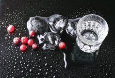 Arándanos y vodka foto de archivo libre de regalías