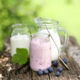 Arándanos y yogur Imagen de archivo