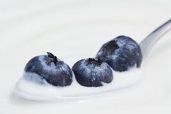 Arándanos y yogur en una cuchara Fotografía de archivo