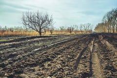 Arável e terra na mola Fotografia de Stock