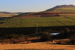 Arête de Hillside Photos libres de droits