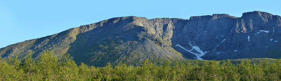 Arête et forêt de montagne Images stock