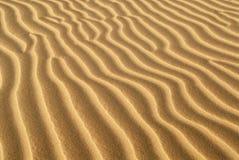 Arêtes de sable formées en dune de sable Image libre de droits