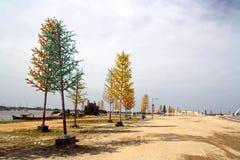 Żarówek drzewa Zdjęcia Stock