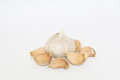 Żarówki garlics na białym tle Obraz Stock