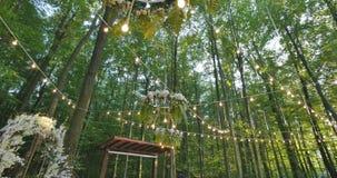 Żarówki plenerowe na drucie przeciw półmroku lasowi, wakacyjnemu pojęciu, żarówkom i jarzeniowemu zrozumieniu na drzewie w lesie, zbiory