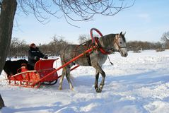Ar door een paard wordt getrokken dat Stock Foto's