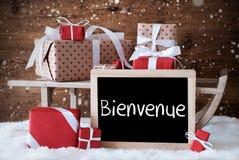 Ar met Giften, Sneeuw, Sneeuwvlokken, Bienvenue Means Welcome Stock Foto