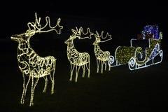 Ar van de Kerstman Stock Foto