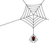 Araña stock de ilustración