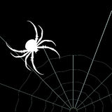 Araña blanca en el fondo negro Silueta del vector Fotografía de archivo