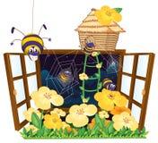 Araña, casa del pájaro y ventana Fotos de archivo libres de regalías