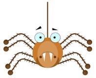 Araña de Brown Foto de archivo libre de regalías