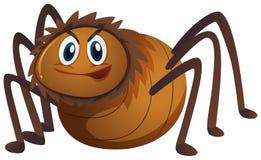 Araña de Brown en el fondo blanco Foto de archivo libre de regalías