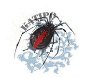 Araña de Katipo Imágenes de archivo libres de regalías