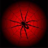 Araña de Víspera de Todos los Santos Imagenes de archivo