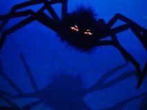 Araña mala Fotografía de archivo