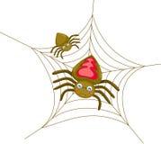Arañas Fotos de archivo