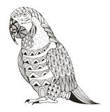 Ara被传统化的鹦鹉zentangle 库存照片