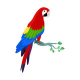 Ara Parrot Flat Design Vector Illustration Stock Photo