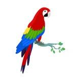 Ara Parrot Flat Design Vector Illustration Stock Photo