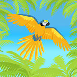 Ara Parrot Flat Design Vector Illustration Royalty Free Stock Image