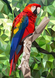 Ara Parrot Low Poly Stock Photo