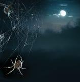 Arañas del partido en la noche de Víspera de Todos los Santos Imágenes de archivo libres de regalías