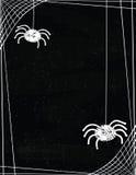 Arañas lindas que cuelgan de una frontera del web en un fondo de la pizarra Imágenes de archivo libres de regalías