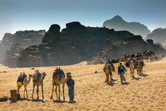 Arab Bedouin Guides Camels Valley of the Moon Wadi Rum Jordan. Arab Bedouin Guides Camels Rock Formations Yellow Sand Camel Wadi Rum Valley of the Moon Jordan Royalty Free Stock Photo