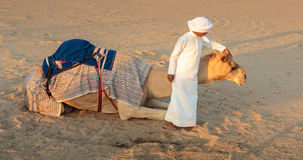 Arab boy with a camel on the farm Stock Photography