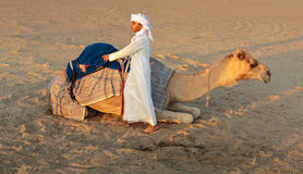 Arab boy with a camel on the farm Stock Image
