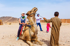 Arab boy rolls tourists on a camel. Stock Photography
