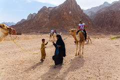 Arab boy rolls tourists on a camel. Stock Image