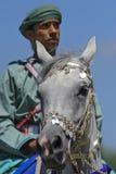 Arab horse Royalty Free Stock Photo