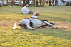Arab Horseman Stock Photo