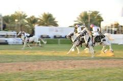 Arab Horseman Royalty Free Stock Image