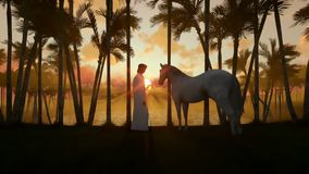 Arab man with horse at oasis in desert with water pond and palm trees at sunset, zoom out stock footage