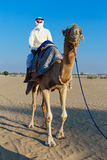 Arab man riding a camel Royalty Free Stock Photography