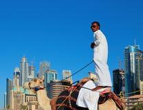 Arab man sitting on a camel on the beach in Dubai Stock Photography