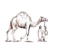 Arab man standing with a camel, Hand Drawn Sketch Vector. Illustration Stock Photography