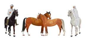 Arab man and woman on horseback vector illustration
