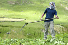 Arab man working in a field Royalty Free Stock Image