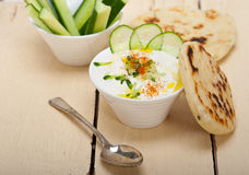 Arab middle east goat yogurt and cucumber salad Royalty Free Stock Images