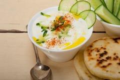 Arab middle east goat yogurt and cucumber salad Stock Images