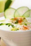 Arab middle east goat yogurt and cucumber salad Royalty Free Stock Photos