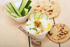 Arab middle east goat yogurt and cucumber salad Royalty Free Stock Photo