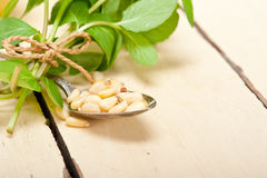 Arab traditional mint and pine nuts tea Stock Photography