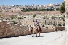 Araber geht auf das Straßenreiten auf einem weißen Esel, Jerusalem lizenzfreies stockbild