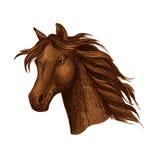 Arabian brown horse race sport emblem Royalty Free Stock Photography